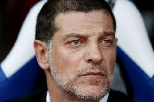 Bilic appointed West Brom boss