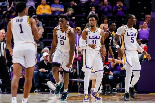 LSU Tigers vs. UMBC Retrievers - 11/19/19 NCAAB Pick, Odds, and Prediction