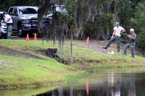Woman killed by alligator at Sea Pines in Hilton Head Island, S.C
