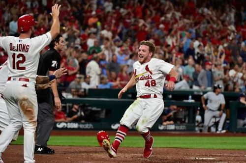 St. Louis Cardinals vs. Milwaukee Brewers - 8/21/19 MLB Pick, Odds, and Prediction