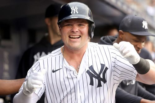 Yankees' Luke Voit belts homer in first at-bat in return from injury