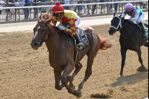 First Captain caps weekend horse racing with Dwyer win