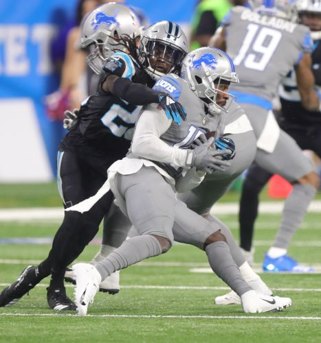 Detroit Lions end skid, 20-19 over Panthers, but lose Kerryon Johnson