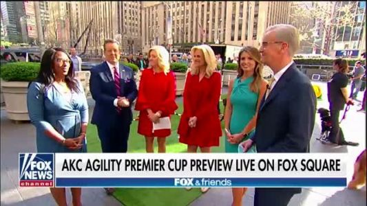 Top dogs show off their agility skills on 'Fox & Friends'