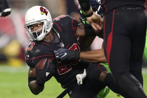 Adrian Peterson signing: Skins RBs are untouchable